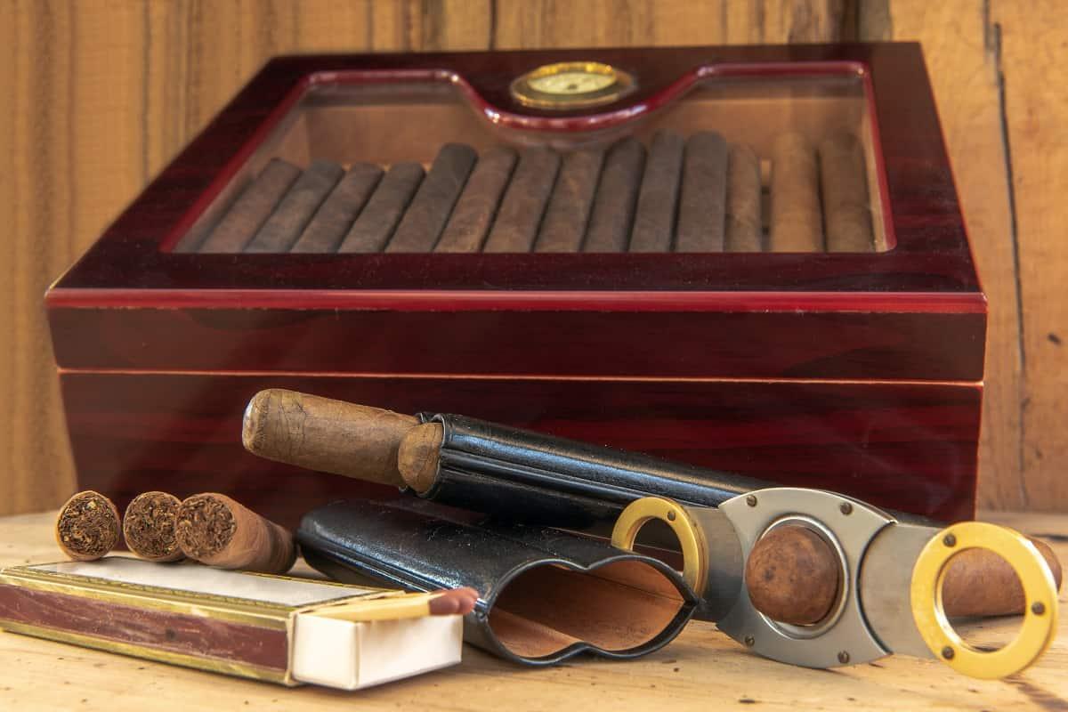 Best Cigar Starter Kits
